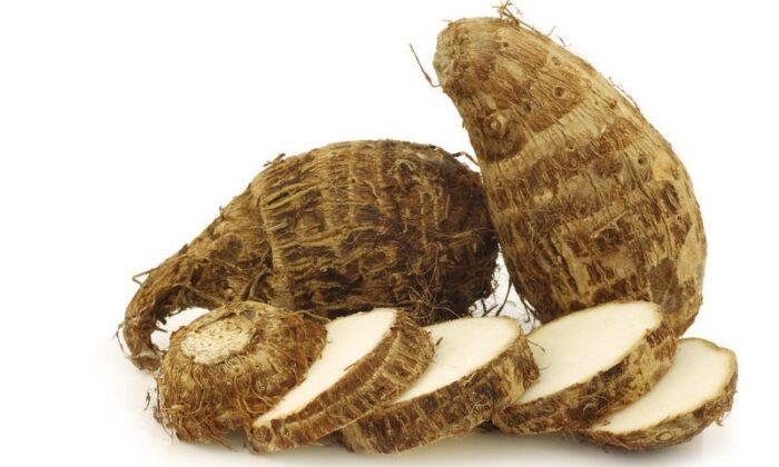 101 Çeşit Şifalı Bitki Ve Baharat Ararot (Maranta Arundinacea)