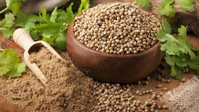 101 Çeşit Şifalı Bitki Ve Baharat Kişniş Tohumu