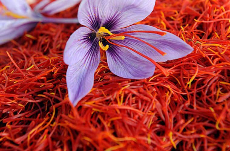 101 Çeşit Şifalı Bitki Ve Baharat Safran (Crocus Sativus) - Hidroalkolik-Safran