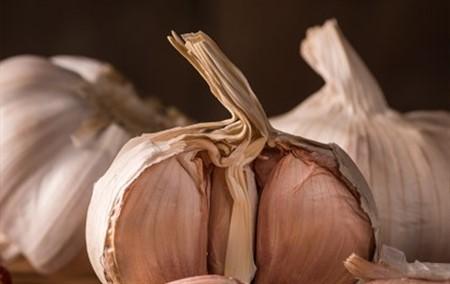 101 Çeşit Şifalı Bitki Ve Baharat Sarımsak (Allium Sativum)