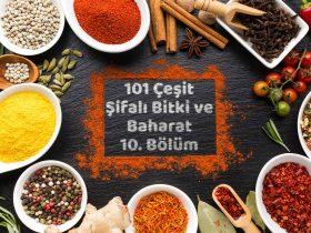 101 Çeşit Şifalı Bitki ve Baharat 10 Bölüm