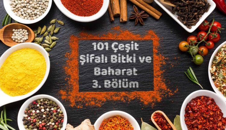 101 Çeşit Şifalı Bitki ve Baharat 3 Bölüm