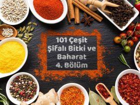 101 Çeşit Şifalı Bitki ve Baharat 4 Bölüm