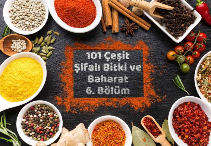 101 Çeşit Şifalı Bitki Ve Baharat 6 Bölüm
