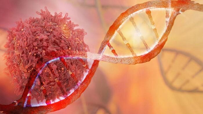 Onkoloji Nedir? Onkoloji Hastalıkları Ve Tedavisi