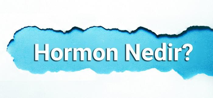 Hormon Nedir? Hormon Düzenleyici Doğal Bitki Ve Yiyecekler