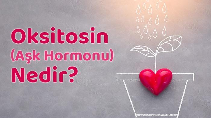 Oksitosin (Aşk Hormonu) Nedir? Nasıl Artırılır?