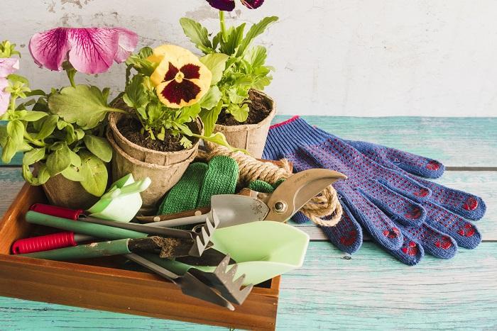 Ateşböceklerini Bahçenize Nasıl Çekersiniz: Daha Sağlıklı Bahçeler Yaratmak İçin 5 Öneri