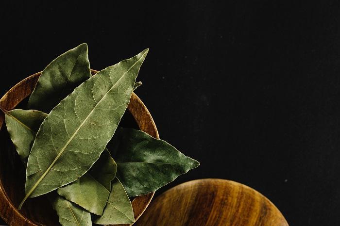 Defne Yaprağı Faydaları Nelerdir Defne Yaprağı Ne İşe Yarar?